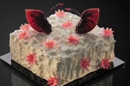<b>黑天鹅蛋糕</b>